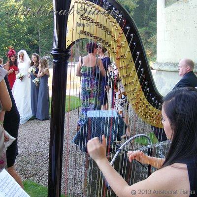 Harpist Glenda Allaway picture 2