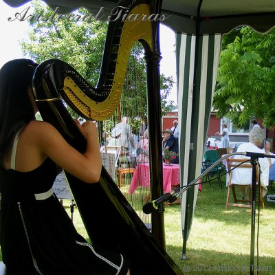 Harpist Glenda Allaway picture 4