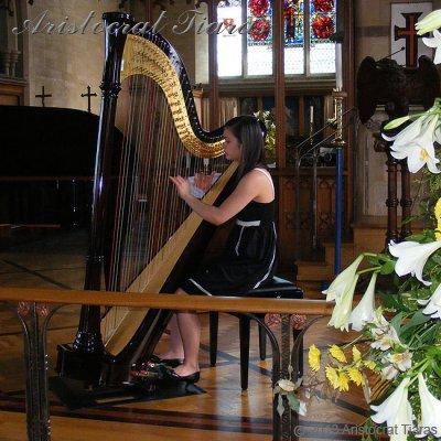 Harpist Glenda Allaway picture 5