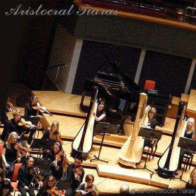 Harpist Glenda Allaway picture 9