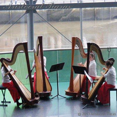 Harpist Hannah Allaway picture 10