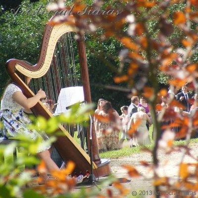 Harpist Hannah Allaway picture 3