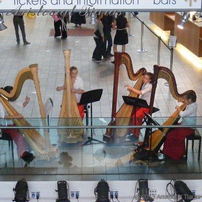 Harpist Hannah Allaway picture 8