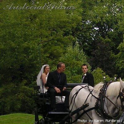 Wedding of Christina and Stephen picture 11